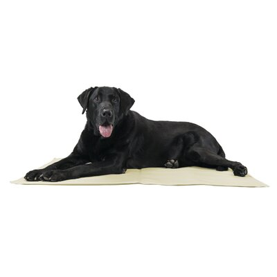 Pupicicle Dog Cooling Mat Color: Tan, Size: Large (26 L x 20 W)