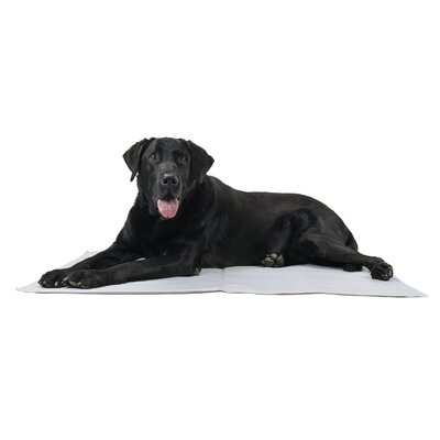 Pupicicle Dog Cooling Mat Color: Gray, Size: Large (26 L x 20 W)