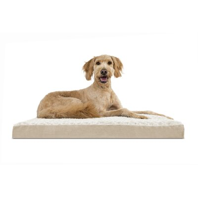 Nap Ultra Plush Deluxe Memory Foam Dog Mat Size: Jumbo (44 L x 35 W), Color: Cream