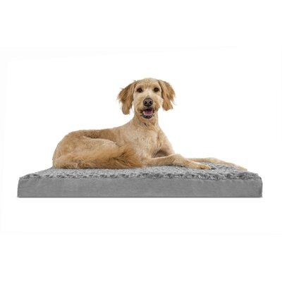 Billy Ultra Plush Deluxe Memory Foam Dog Mat Size: Jumbo (44 L x 35 W), Color: Gray
