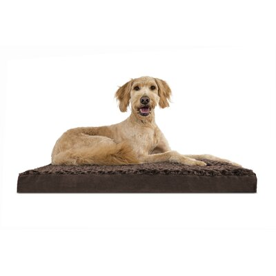 Nap Ultra Plush Deluxe Memory Foam Dog Mat Size: Medium (30 L x 20 W), Color: Chocolate