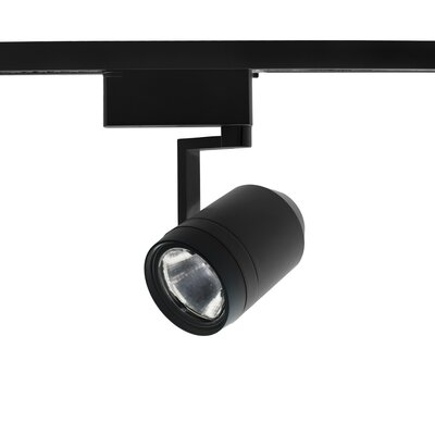 Paloma 1-Light 28W 2700K LED Track Head Finish: Black, Lens Degree: Flood