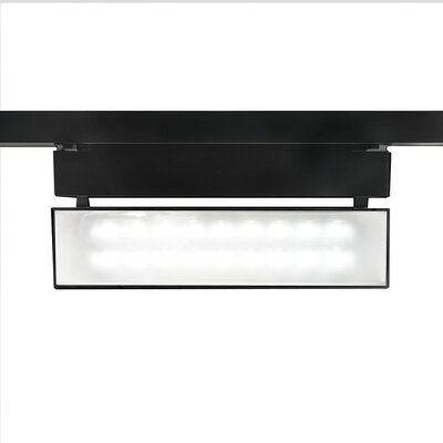 43W 3000K LED Wall Washer Track Head Finish: Platinum