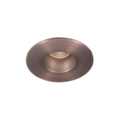 Tesla Pro High Output 2 LED Recessed Trim Finish: Copper Bronze