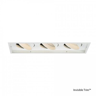 Line Voltage Downlight Recessed Housing with Multi Spot Trim Finish Color: White