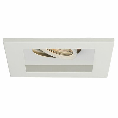 Line Voltage Downlight Recessed Housing with Multi Spot Trim Finish Finish: White