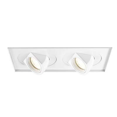 Tesla 2-Light Invisible LED Recessed Multi-Spotlight Lens Degree: Flood