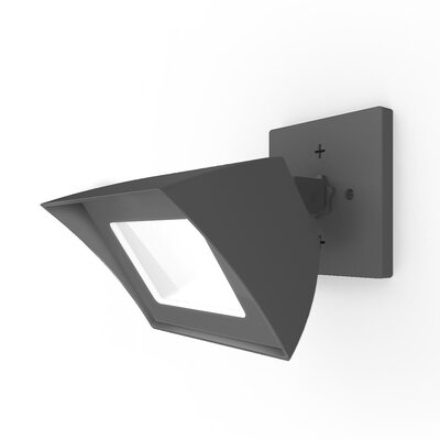 Endurance 1-Light Flood Light