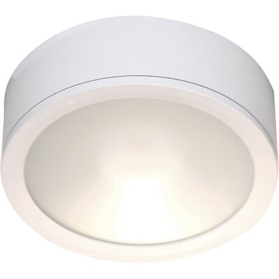 Tube Flush Mount Finish: White