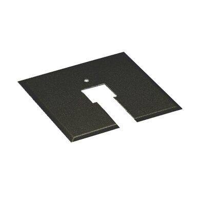 Track Lighting Socket Plate Finish: Black