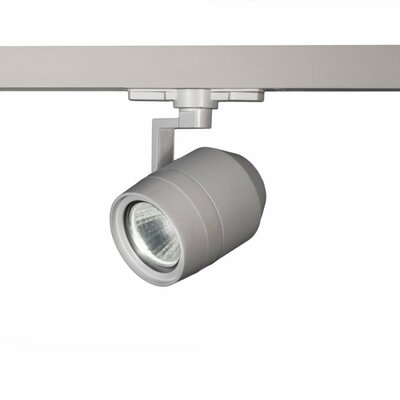 Paloma 1-Light 23W 2700K 90 CRI LED Track Head Finish: Platinum, Lens Degree: Flood