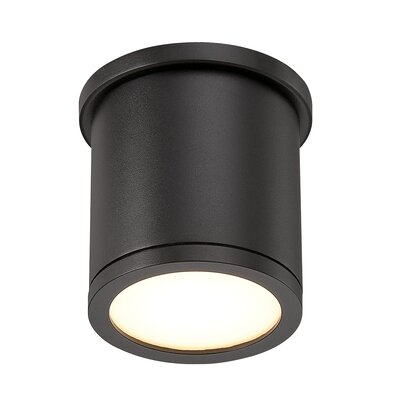 Tube 1-Light Flush Mount Finish: Black