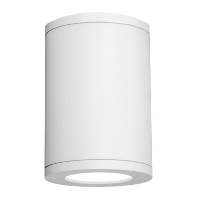 Tube 1-Light Flush Mount Finish: White, Color Temperature: 3500K