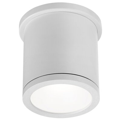 Tube 1-Light Flush Mount Finish: White
