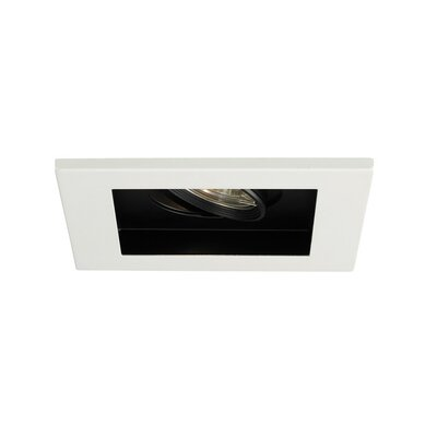 Line Voltage Downlight Recessed Housing with Multi Spot Trim Finish Finish: Black