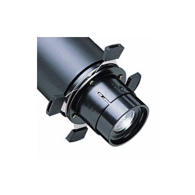 Low Voltage Surface Mount Framing Projector Light Fitter Finish: Black