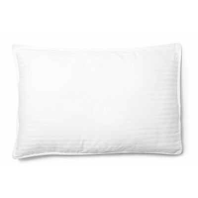 Hyper Clean Natural 100% Cotton Lumbar Pillow Size: 20 x 30