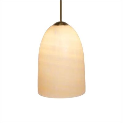 Genuine 1-Light Mini Pendant Finish: Satin Nickel, Mounting Type: Pendant with Canopy/Transformer