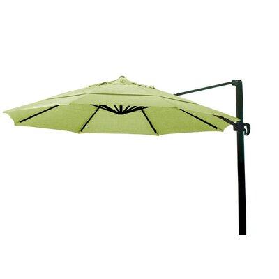 11 Cantilever Umbrella Color: Macaw