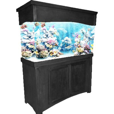 Calypso Birch Series Aquarium Stand Finish: Black, Size: 65 H x 52.5 W x 20.7 D