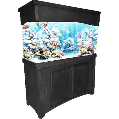 Calypso Birch Series Aquarium Cabinet Finish: Black, Size: 32.5 H x 50.5 W x 19.5 D