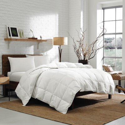 Lightweight Down Comforter Size: Oversized Queen