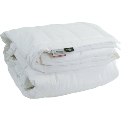 Cotton Sateen PrimaLoft Blanket Size: Queen