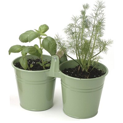 Houston International Metal Pot Planter (Set of 12)