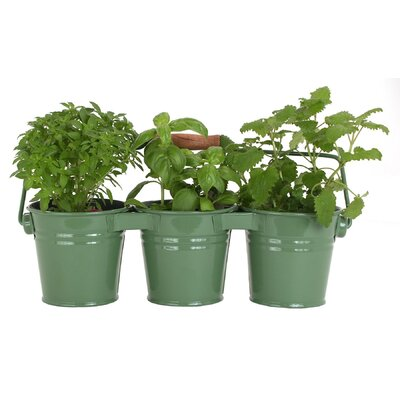Metal Pot Planter (Set of 18) Color: Green