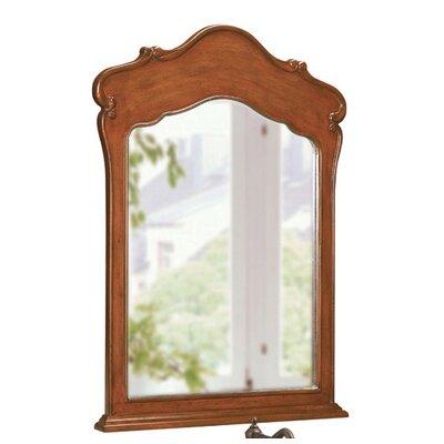 "38"" H x 28"" W Single Vanity Mirror"