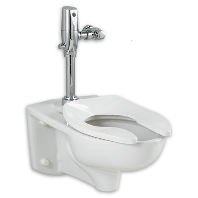 Afwall EverClean Dual Flush Elongated One-Piece Toilet