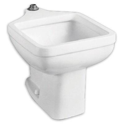 20 x 29.25 Single Floor Mounted Clinic Service Sink