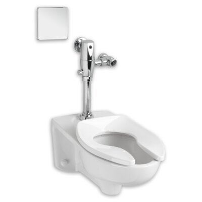 Afwall Dual Flush Elongated One-Piece Toilet