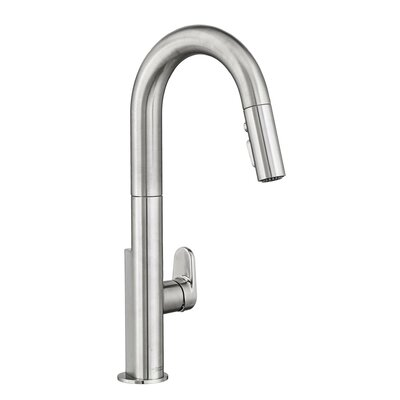 Beale Single-Handle Pull Down Kitchen Faucet Finish: Stainless Steel