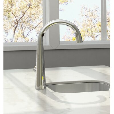Edgewater Single Handle Kitchen Faucet with Pull Down Spray Finish: Polished Chrome