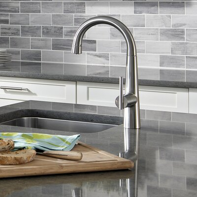 Edgewater Pull-Down Kitchen Faucet with Select Flo Finish: Stainless Steel