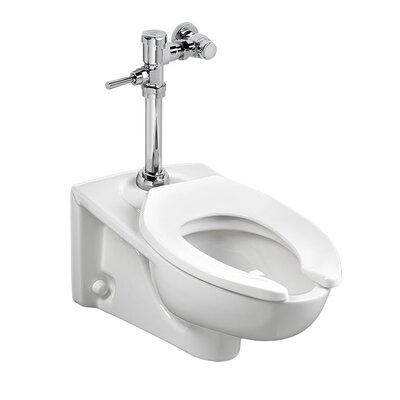 Afwall Millennium Flowise Dual Flush Elongated One-Piece Toilet