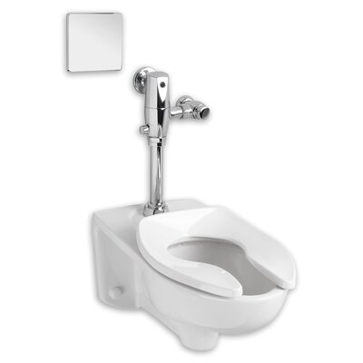 Afwall 1.1 GPF Elongated One-Piece Toilet