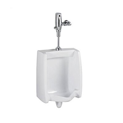 Flowise Washbrook System Electronic Urinal