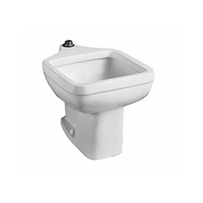 Clinic 20 x 29.25 Freestanding Service Utility Sink