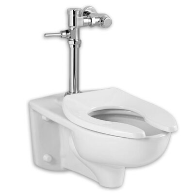 Afwall 1.28 GPF Elongated One-Piece Toilet