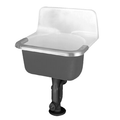24 x 20.5 Single Akron Service Sink