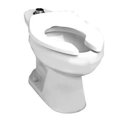 Colorado Flowise Top Spud Flush Valve Dual Flush Elongated Toilet Bowl