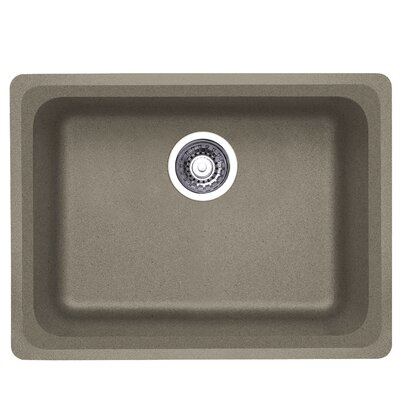Vision 24 x 18 Single Kitchen Sink Finish: Truffle