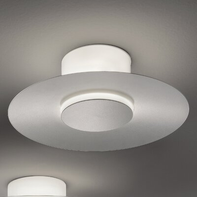 Thor 1-Light  Wall / Celing Sconce