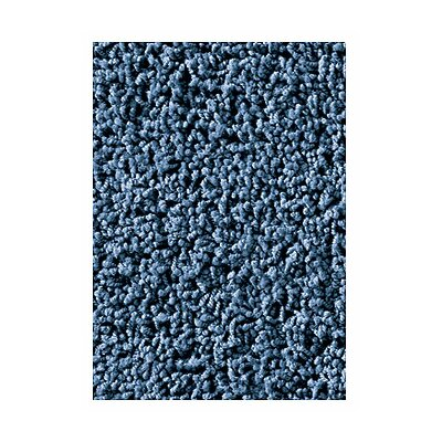 Soft Solids Kidply Denim Blue Area Rug Rug Size: 8