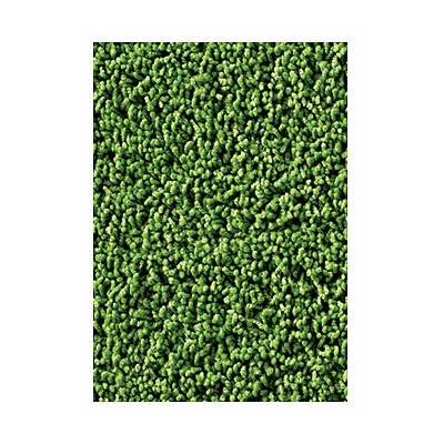 Soft Solids KIDply Grass Green Area Rug Rug Size: 84 x 12