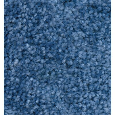 KIDPlush Solids Pacific Blue Area Rug Rug Size: 4 x 6