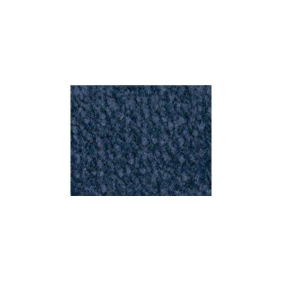 Solid Mt. Shasta Ocean Blue Area Rug Rug Size: 4 x 6