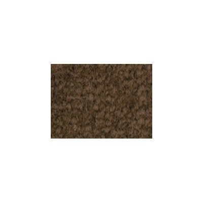 Solid Mt. Shasta Cocoa Area Rug Rug Size: 4 x 6
